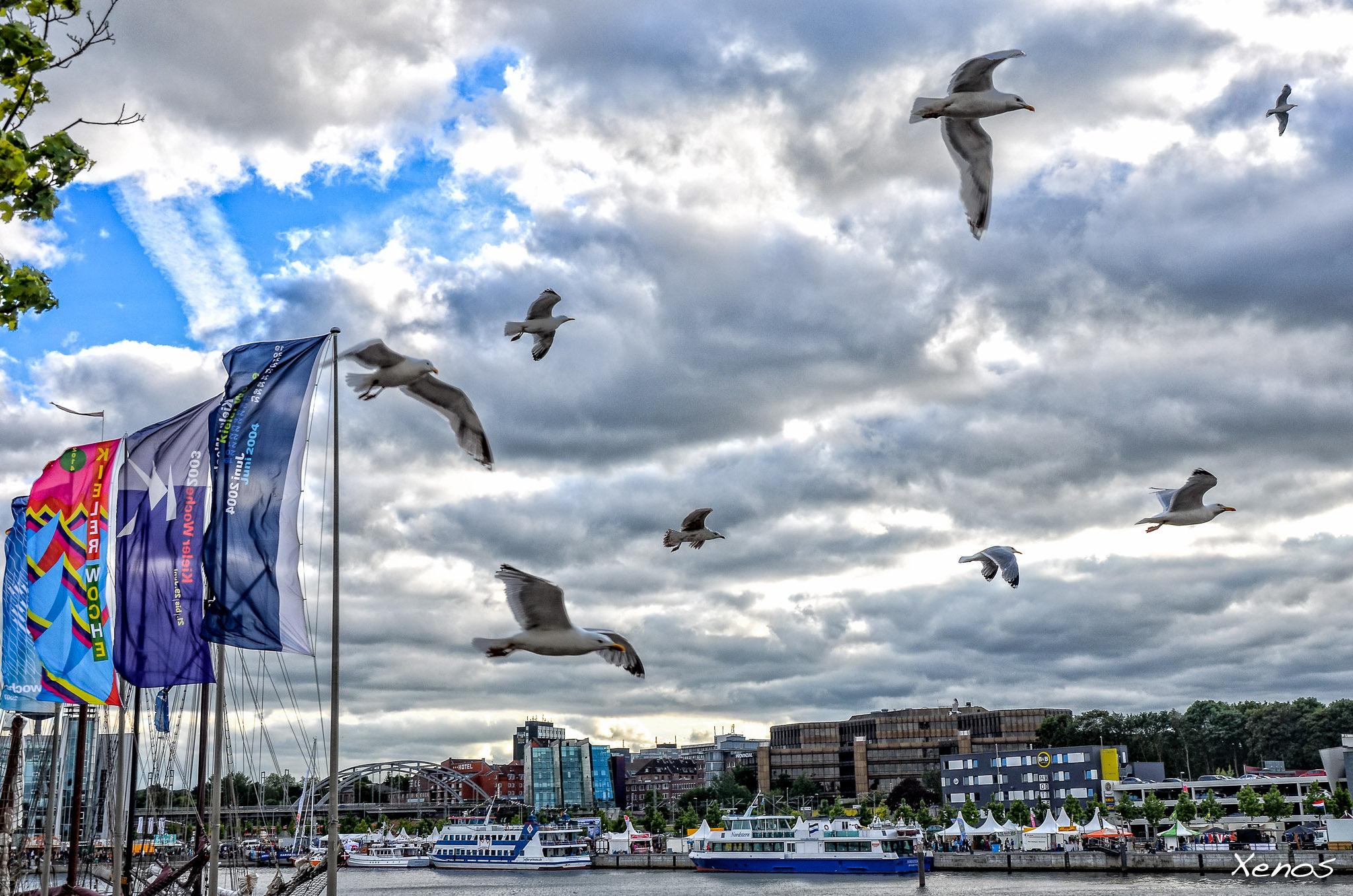 夏のドイツ一大祭!世界最大のヨット・フェスティバル「キール週間」