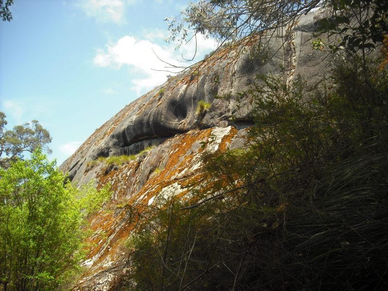 オーストラリアの秘境!アボリジニが愛する雄大な森を見渡すパノラマ
