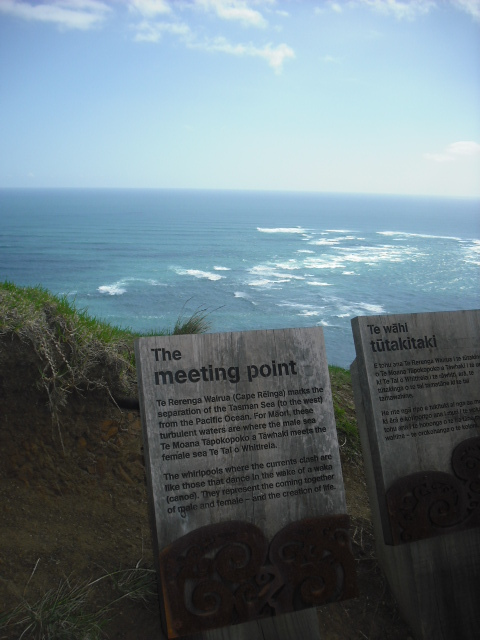 new-zealand-capereinga-02