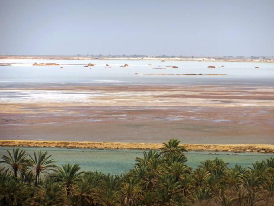 砂漠の真ん中のオアシス!秘境シワのオススメ絶景ポイント