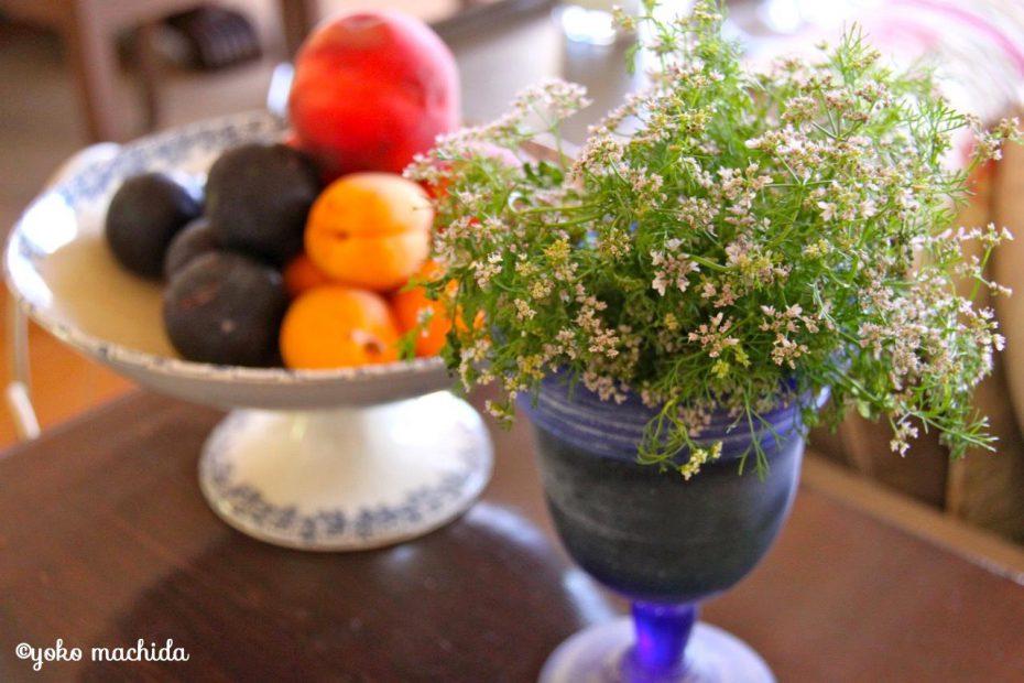 コリアンダーの花も、こんなに可憐。まずは花を愛でて、そのあと食べる!