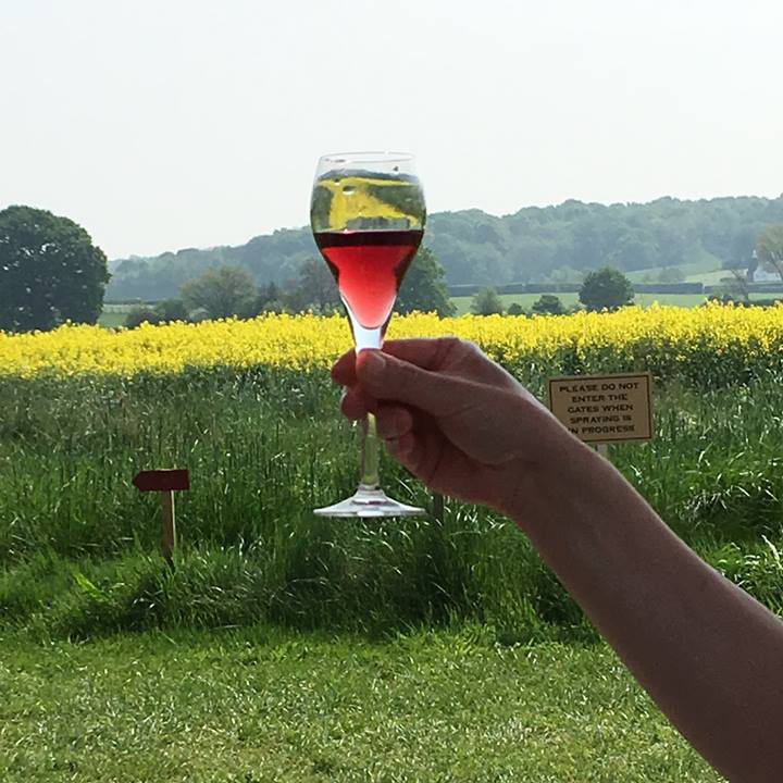 美味しくなっているイギリスワイン Hush Heath Estate & Wineryを訪ねて