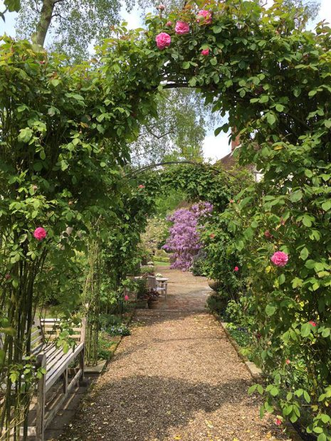 britain-hush-heath-estate-winery-06