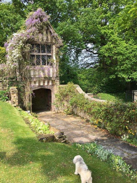 britain-hush-heath-estate-winery-08